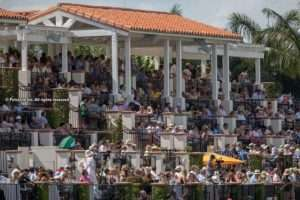 Lucchese 40-goal Polo Challenge to Benefit Injured/ill Polo Players & Grooms