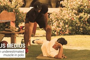 GLUTEUS MEDIUS: AN UNDERESTIMATED MUSCLE IN POLO