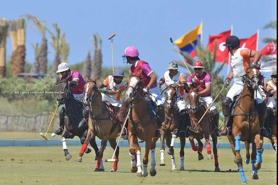 Lawyers Polo Day 1 & 2