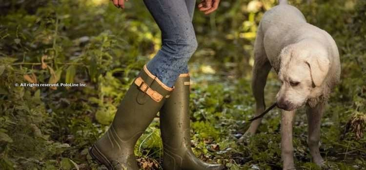 Ariat Burford Welly