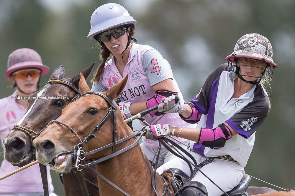 Pink Polo Cup – Wednesday Nov. 6th