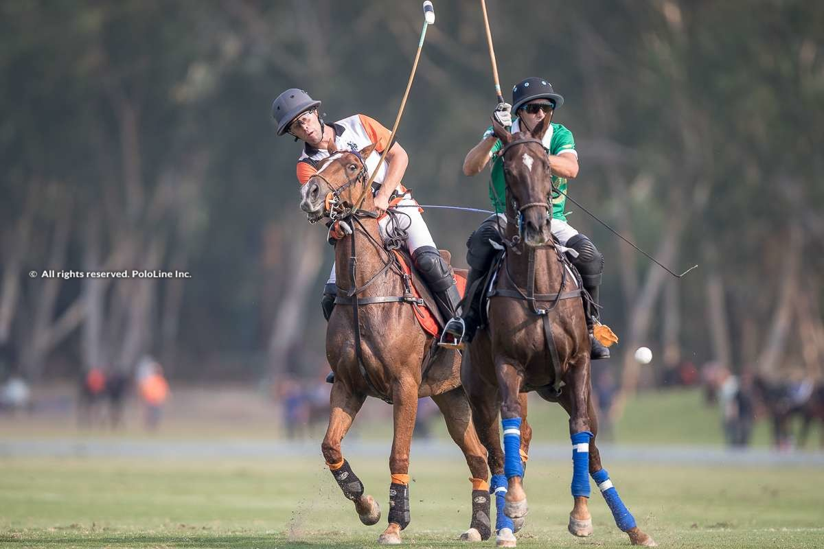 Thai Polo vs Tang Polo