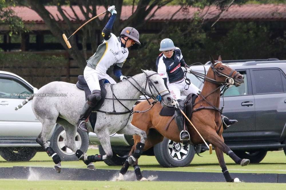 Stable Door Polo vs Daily Racing Form