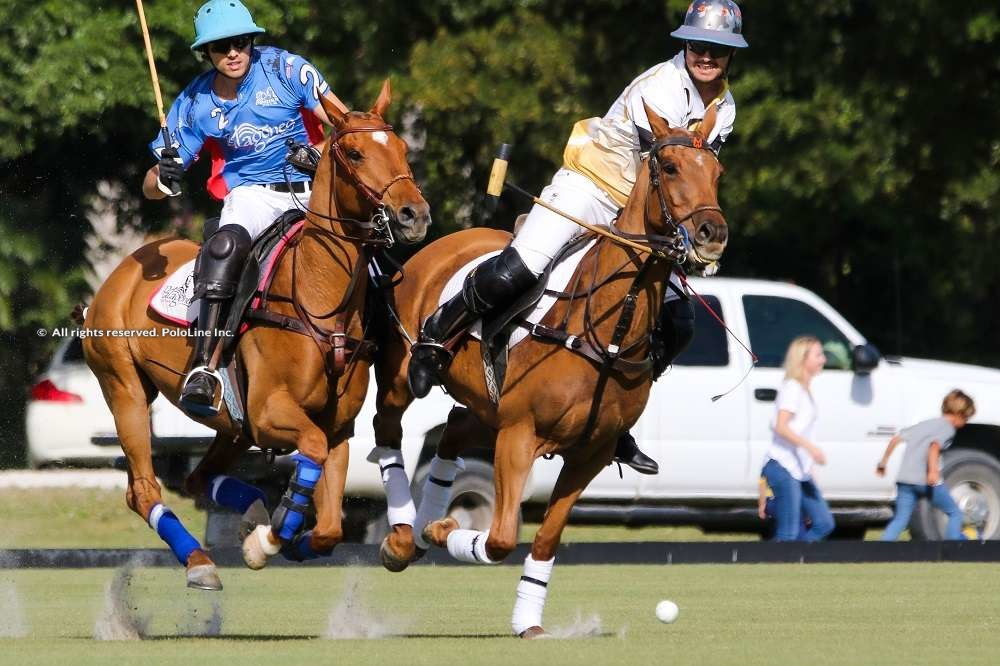 Palm Beach Equine vs Patagones
