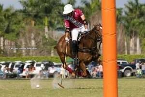USPA Gold Cup: Daily Racing Form & Pilot qualify for semis