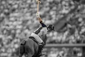 Pillars of Polo: The Hit