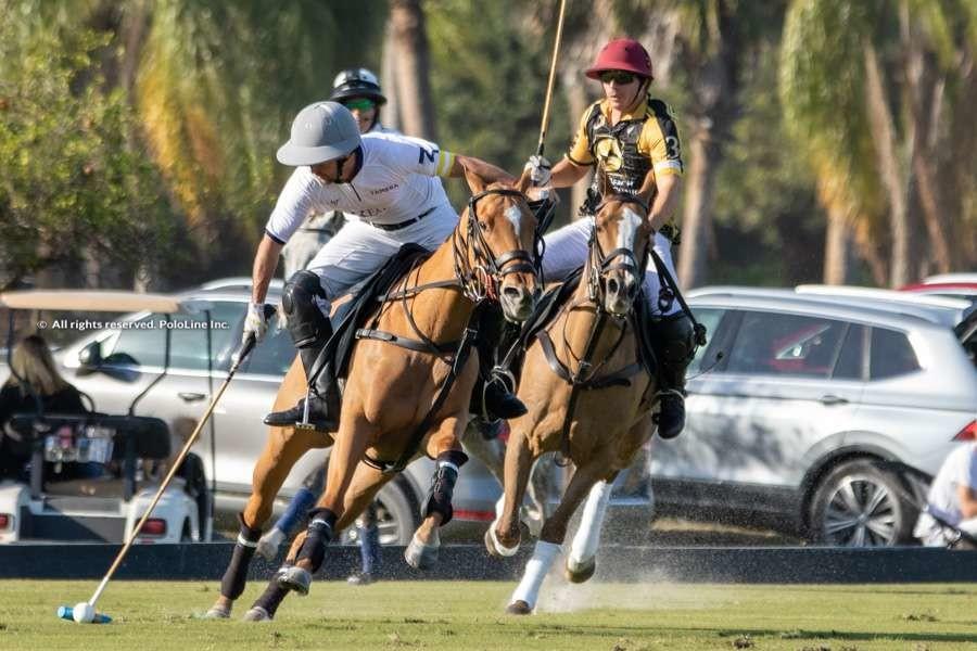 Palm Beach Equine vs. Tamera
