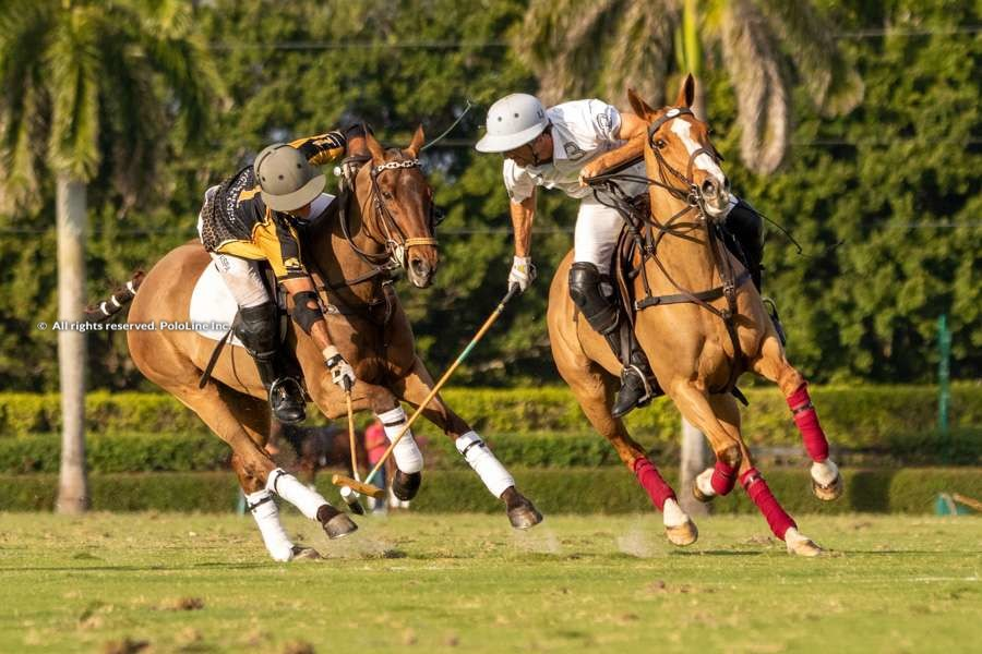 Aspen vs. Palm Beach Equine