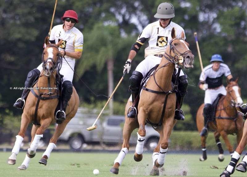 Palm Beach Equine vs. Beverly Polo