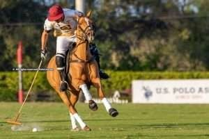 """""""Polo in the US is doing very well; there are a lot of players and patrons around"""""""