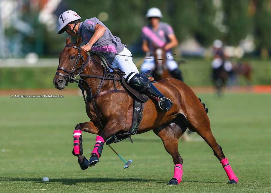 Coupe d'Or, Talandracas vs. Brittany Polo
